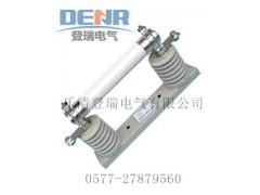XRNT1-6/63A高压熔断器