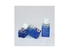 塑料冷却液、金冷防冻液 劲霸润滑油