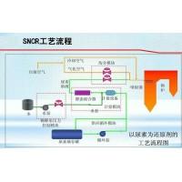 SNCR+SCR联合脱硝-锅炉烟气超低排放上海硕馨