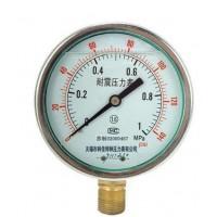 耐震压力表型号规格,量程,精度